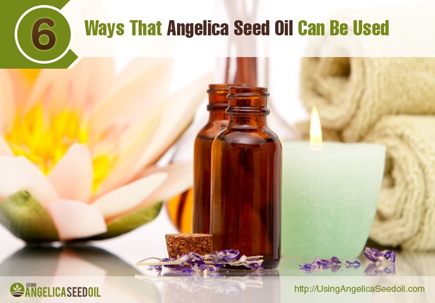 angelica essential oil for the body